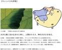 同志社大学『京田辺キャンパス礼拝堂および関連施設』
